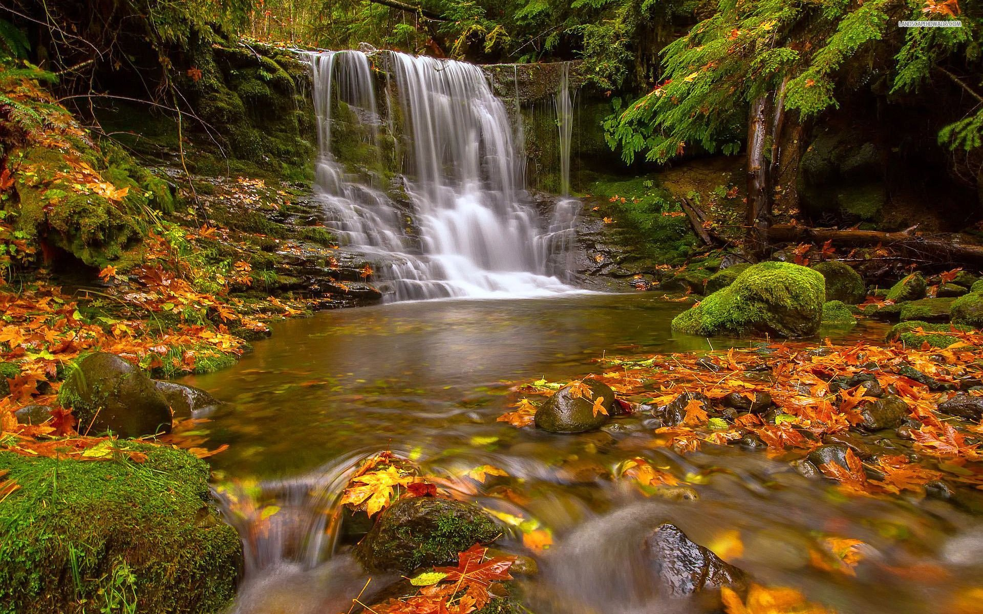 Early Autumn Waterfall
